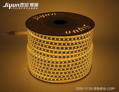 庆阳220V-5730-双色变光-120P